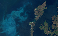 Algae bloom off the outer Outer Hebrides